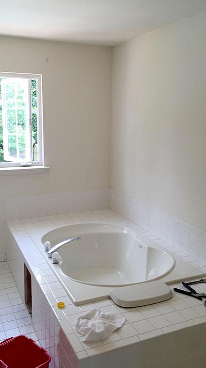 Master Bathroom Tub Before Remodel